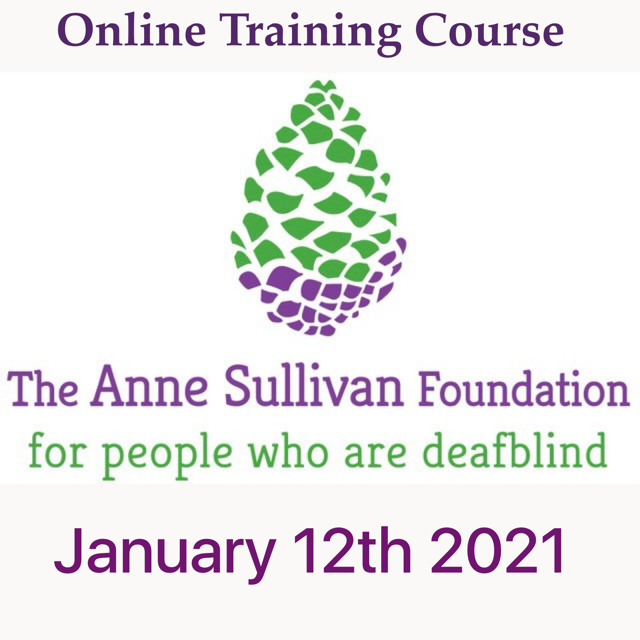 New foundation logo pine with the words online training course January 12th 2021cone